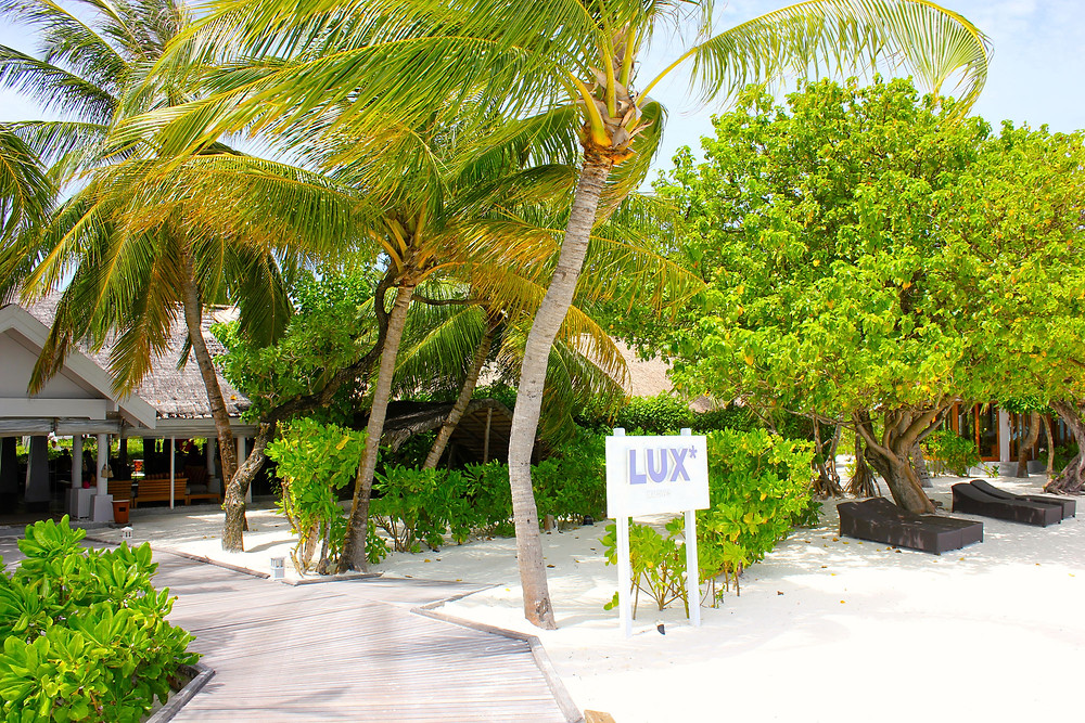 Maldives Experience.jpg