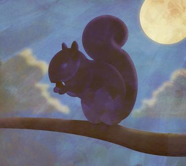 Squirrel in moonlight