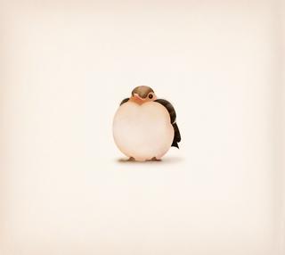 Fledgling Chaffinch