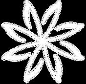 PEAK Logo WHite Clear.png