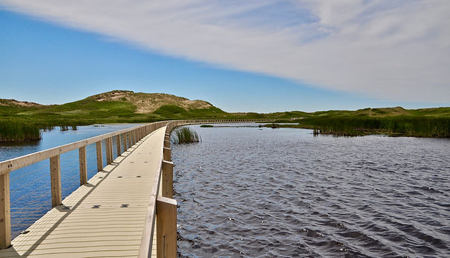 Where to go in PEI - Cavendish Greenwich floating boardwalk