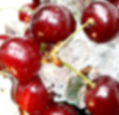 Cherry-Wallpaper-030.jpg