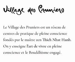 À Lille et Hauts-de-France 59 et 62 : Méditer en Pleine Conscience, un art de vivre.