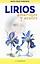 Lirios azules y amarillos-Mario Cesar Fe