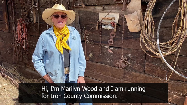 marilyn wood election video