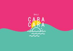219_CARACARA_COVER