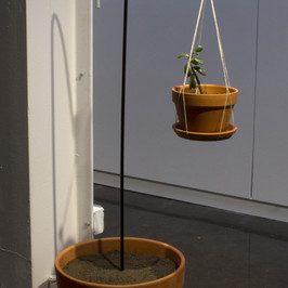 On the Other Side 2017 Planters, soil, shepard's hook, twine, jade plant