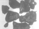 image65.png