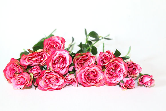 20 Small Pink Roses on Short Stems