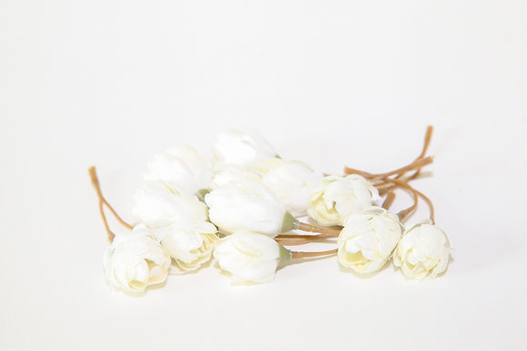 12 Hops Blossoms in Ivory White