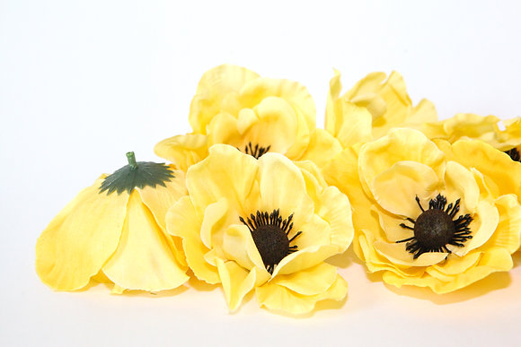 8 Anemones in Yellow
