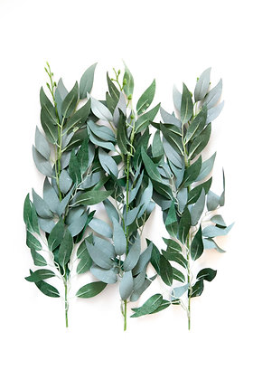 5 Foliage Branches in Frosted Green