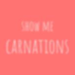 show me carnations.png