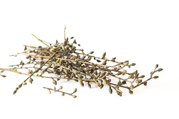 16 Brown Seed Berry Branch Pieces - Filler