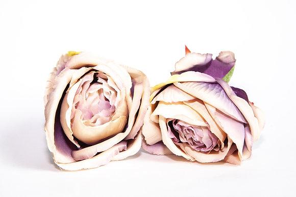 Cabbage Rose - ANTIQUE LAVENDER/CREAM