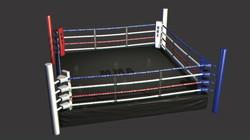 Boxing Ring (2012)