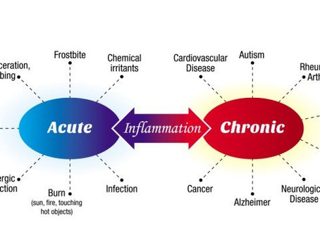 Markers of Inflammation & Blood Chemistry Analysis