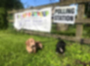 Dachsunds Polling Station