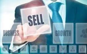 Sell Your Business Brett Pittsenbargar Austin Tx