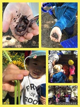children find worms