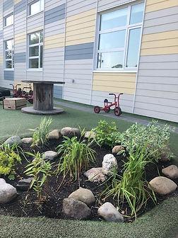 Our Rain Garden