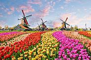 Países Bajos.jpg