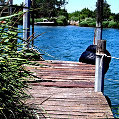 Dock in need of a boat