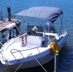 Boat with a blue top