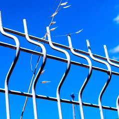 Fence, weeds and the sky