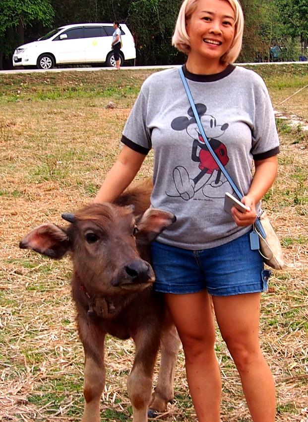 Kainui with orphaned buffalo