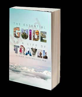 Template-3D book cover Essential Guide w
