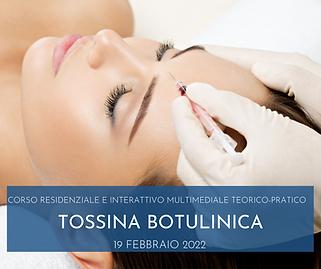 TOSSINA NOVIELLO 19 FEBBRAIO.png