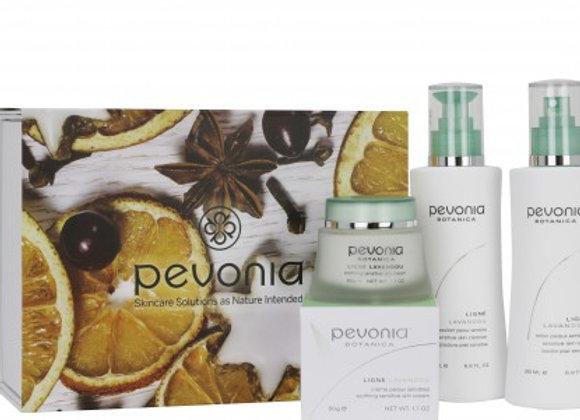 Festive Perfection Skincare Essentials Sensitive
