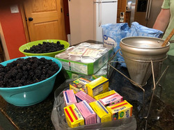 2019_05_29 Blackberry Jam ingredients