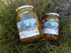 Tarros de miel de romero