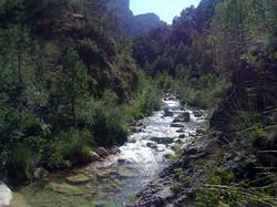 Río Tus