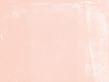 salmon_1 (1).png