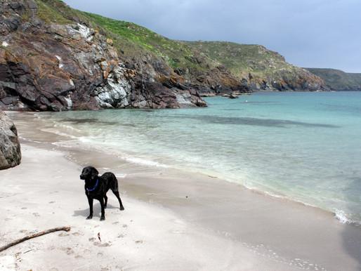 Properly Secret Beaches