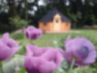 kota_fleursFontaien%20hallate_edited.jpg