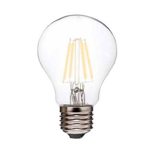 LED Edison Bulb (A19)