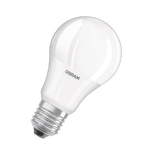 Osram P40 Bulb