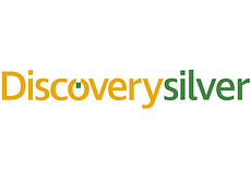 Discovery Silver.png