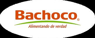 LOGO BACHOCO.png