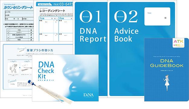1_dina_set1.jpg