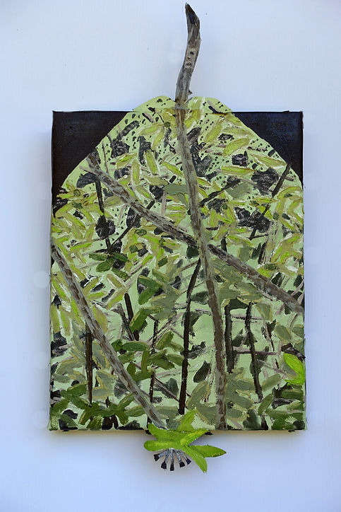 fruit de forêt 36x19