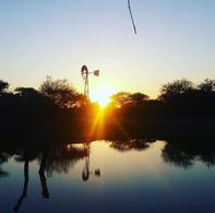Sunrise with Windmill