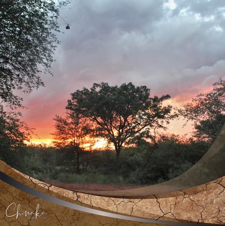 Bushveld