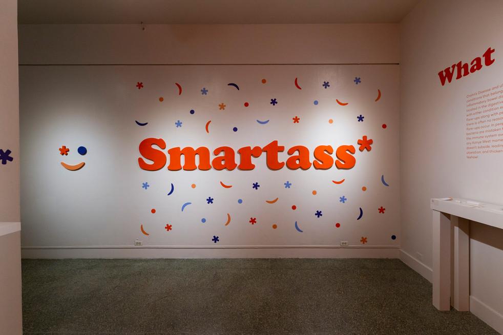 Smartass* installation