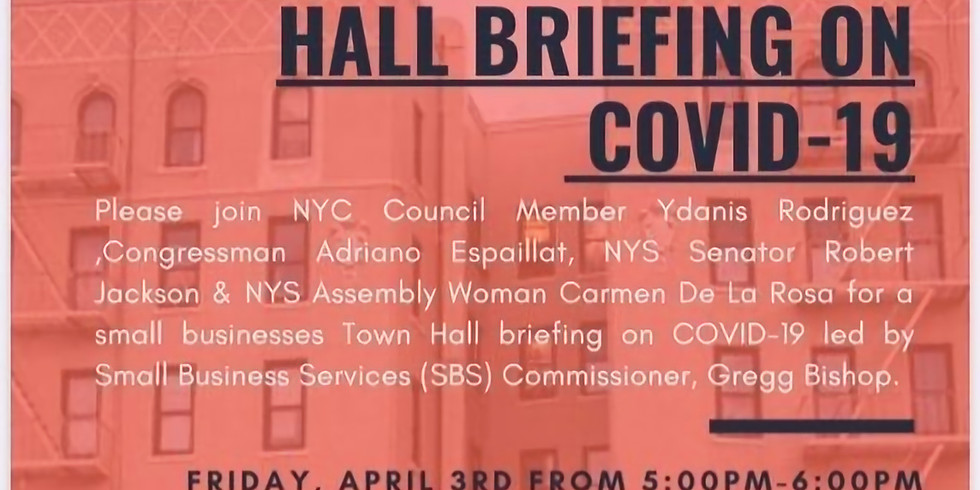 Small Business Town Hall Briefing on COVID19