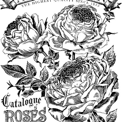 """Catalogue of Roses 24"""" by 33"""" Transfer"""